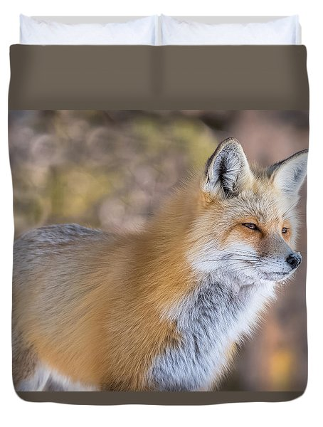 Duvet Cover featuring the photograph Red Fox In Winter Glow by Yeates Photography