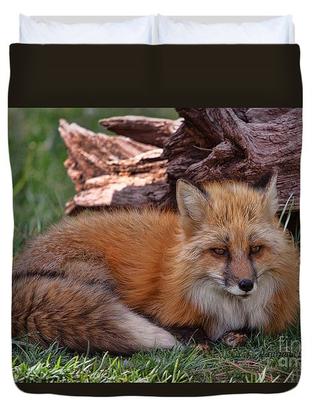 Duvet Cover featuring the photograph Red Fox by Laurinda Bowling