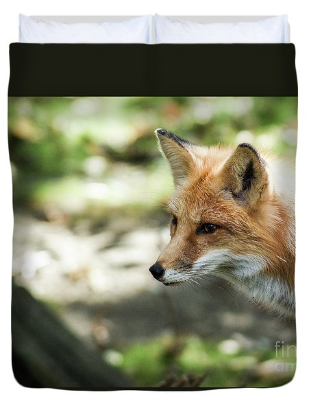 Red Fox Duvet Cover by Lisa L Silva