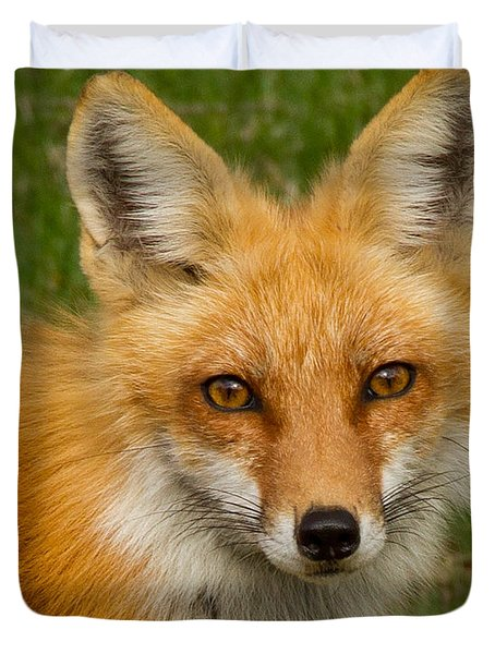 Red Fox Portrait Duvet Cover