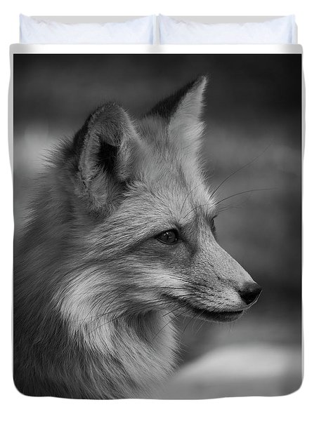 Red Fox Portrait In Black And White Duvet Cover