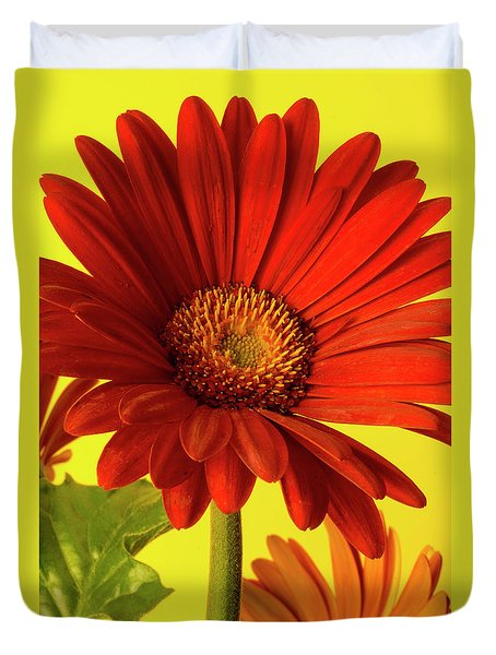 Duvet Cover featuring the photograph Red Gerbera Daisy 2 by Richard Rizzo