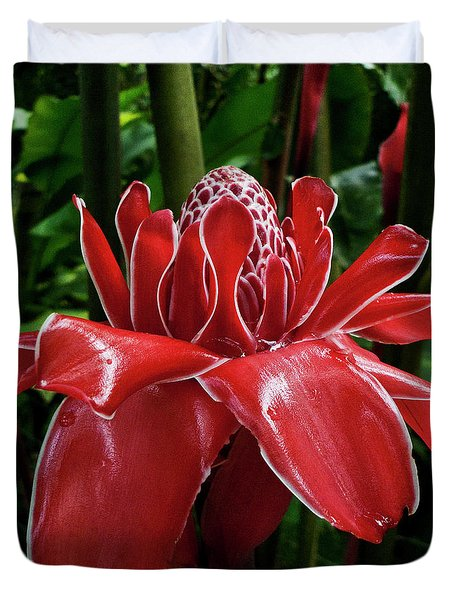 Red Ginger Lily Duvet Cover by Heiko Koehrer-Wagner