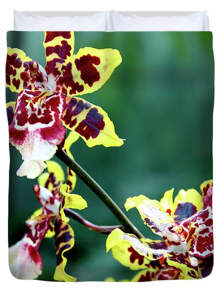 Striped Maroon And Yellow Orchid Duvet Cover