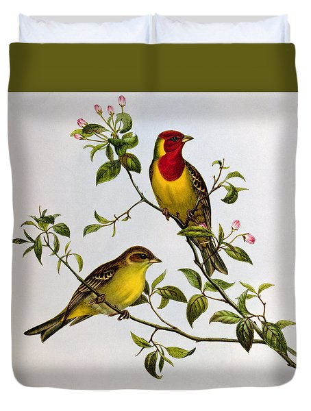 Red Headed Bunting Duvet Cover by John Gould