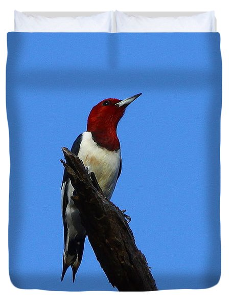 Red Headed Woodpecker On A Snag Duvet Cover