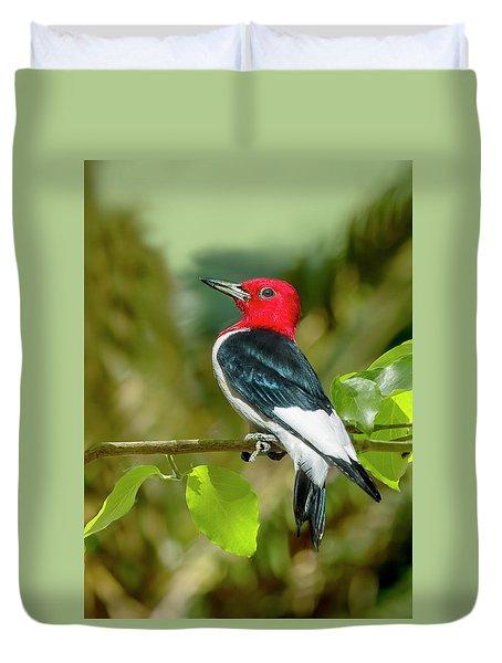 Red-headed Woodpecker Portrait Duvet Cover