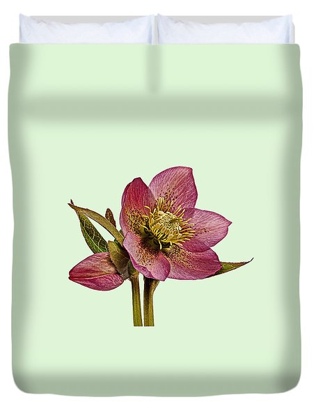 Duvet Cover featuring the photograph Red Hellebore Green Background by Paul Gulliver