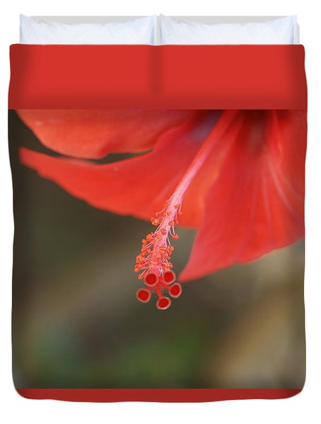 Red Hibiscus Flower 4 Duvet Cover