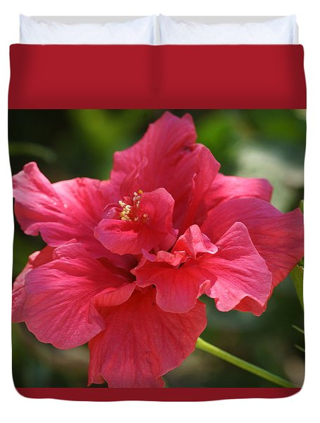 Red Hibiscus Flower 5 Duvet Cover