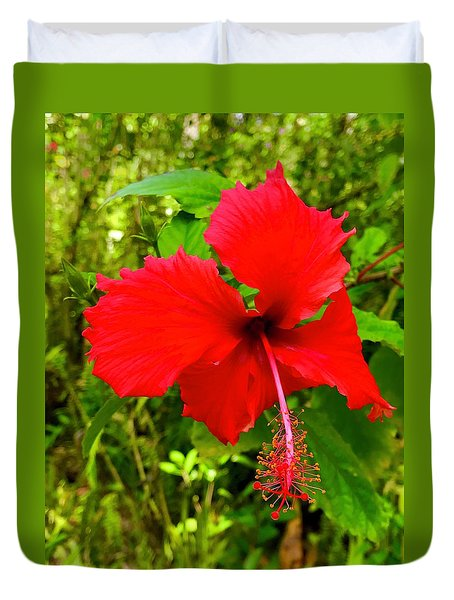 Red Hibiscus In Puna Duvet Cover