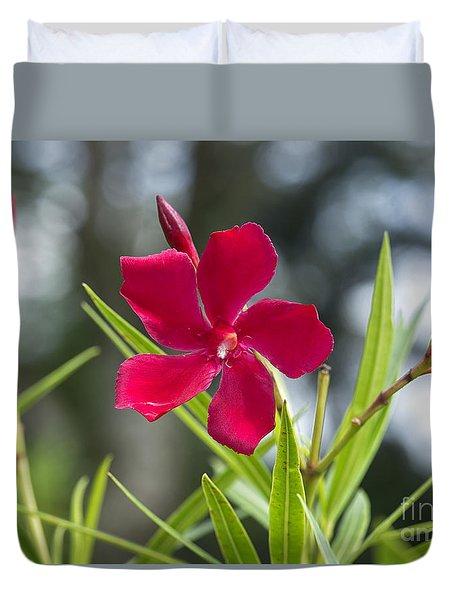 Red Hibiscus, Sri Lanka Duvet Cover