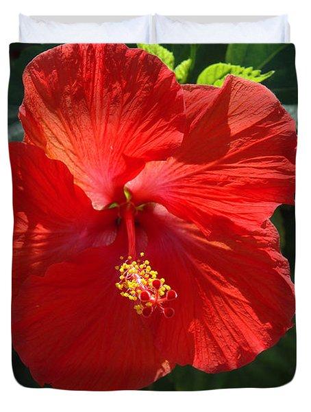 Red Hibiscus Duvet Cover by Susanne Van Hulst