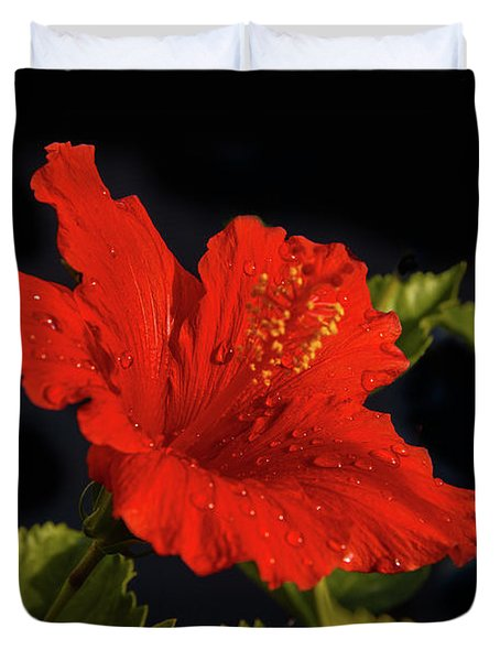 Red Hibiscus With Water Drops Duvet Cover