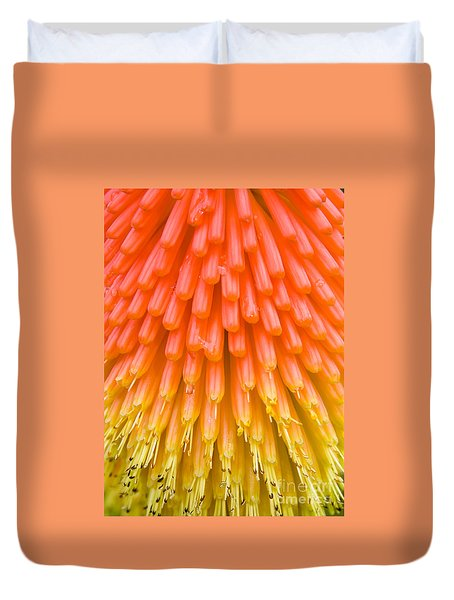 Red Hot Poker Flower Close Up Duvet Cover
