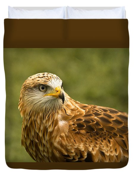 Duvet Cover featuring the photograph Red Kite by Scott Carruthers