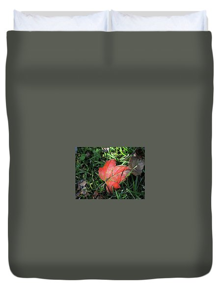 Red Leaf Against Green Grass Duvet Cover