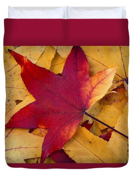 Duvet Cover featuring the photograph Red Leaf by Chevy Fleet