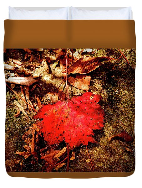 Duvet Cover featuring the photograph Red Leaf by Meta Gatschenberger