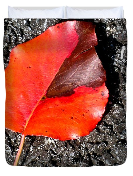 Red Leaf On Asphalt Duvet Cover by Douglas Barnett