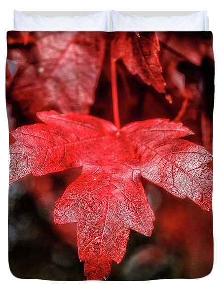 Red Leaf Duvet Cover by Robert Bales
