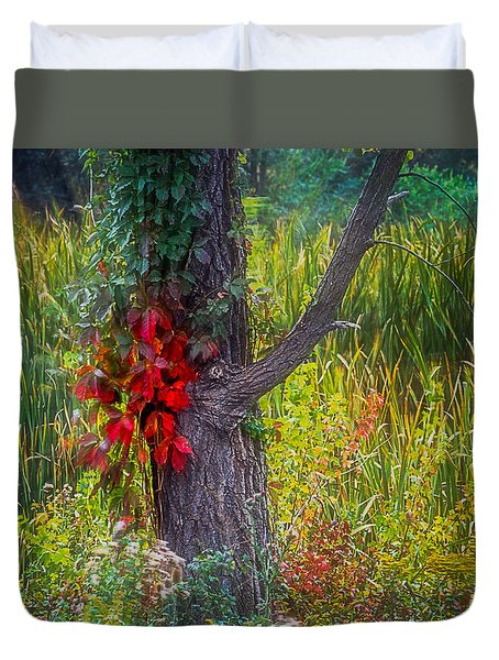 Red Leaves And Vines On Tree In Forest Of Reeds Duvet Cover