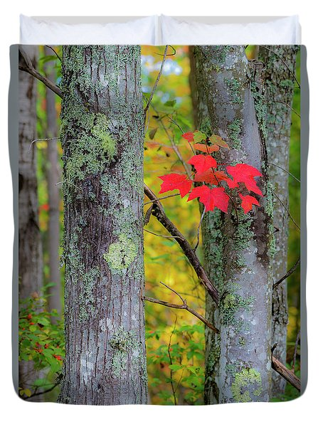 Duvet Cover featuring the photograph Red Leaves by Gary Lengyel