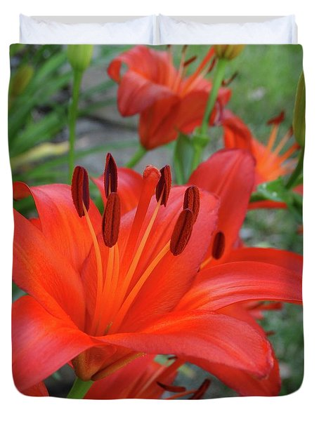 Red Lilies Duvet Cover by Rebecca Overton