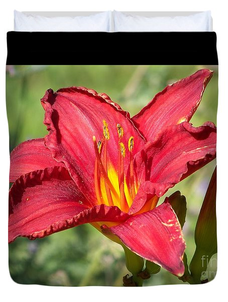 Duvet Cover featuring the photograph Red Flower by Eunice Miller