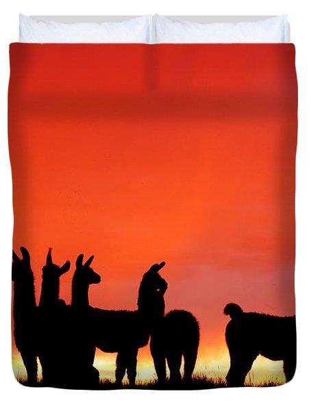 Red Llama Sunset 1 Duvet Cover