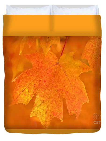 Red Maple Autumn Duvet Cover by Marion Johnson