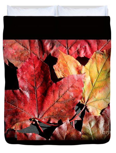 Red Maple Leaves Digital Painting Duvet Cover by Barbara Griffin