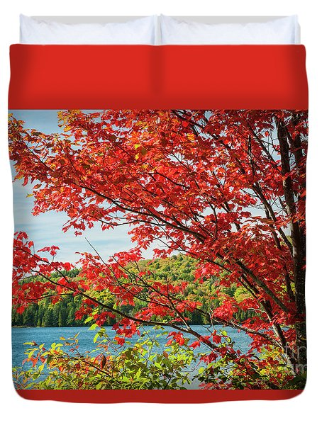 Duvet Cover featuring the photograph Red Maple On Lake Shore by Elena Elisseeva