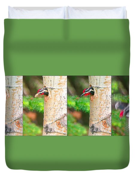 Red-naped Sapsucker Nest Building Sequence - Glacier National Park Duvet Cover