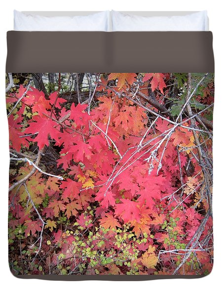 Duvet Cover featuring the photograph Red Oak Leaves by Deborah Moen