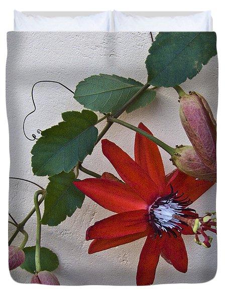 Red On White Duvet Cover by Heiko Koehrer-Wagner