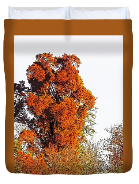 Red-orange Fall Tree Duvet Cover by Craig Walters