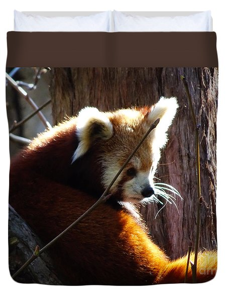 Duvet Cover featuring the photograph Red Panda by Angela DeFrias
