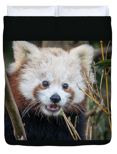 Red Panda Wonder Duvet Cover