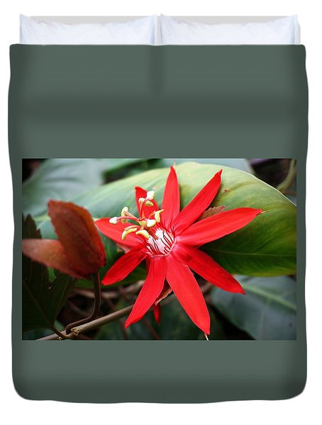 Red Passion Flower Duvet Cover