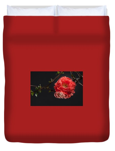 Red Plum In Early Spring Duvet Cover by Catherine Lau