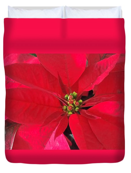 Red Poinsettia Duvet Cover by Pamela Walton