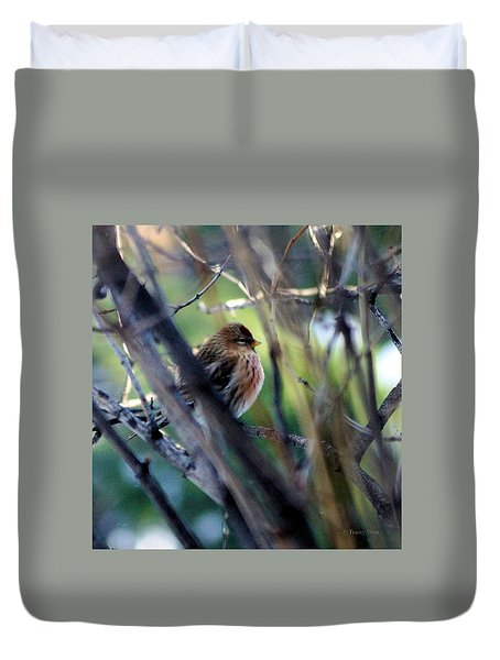 Red Poll, Resting Duvet Cover