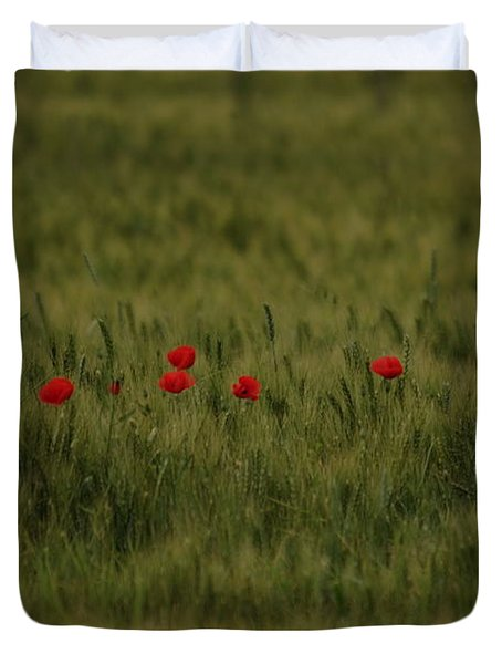 Red Poppies In Meadow Duvet Cover