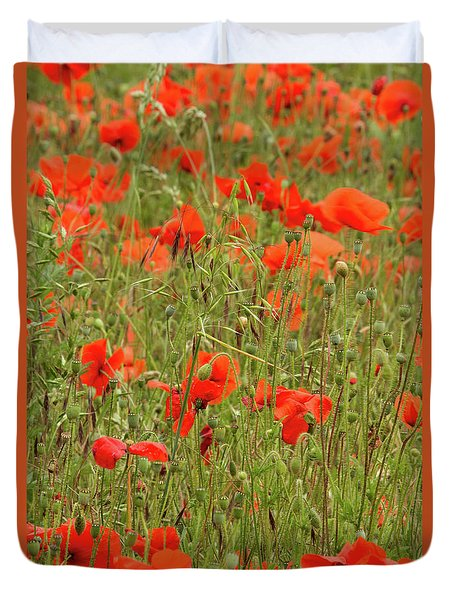 Red Poppies Duvet Cover by Wayne Molyneux