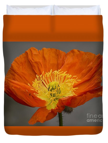 Red Poppy II Duvet Cover