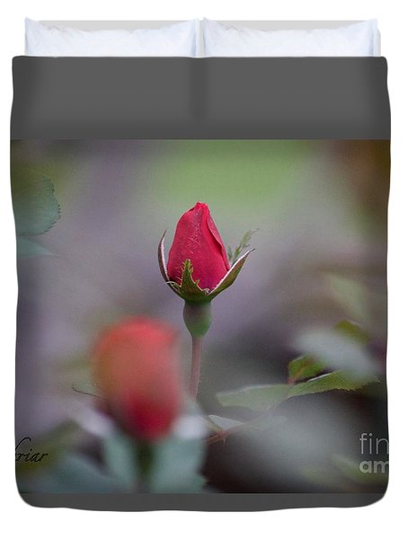 Red Red Rose Duvet Cover