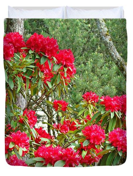 Red Rhododendron Garden Art Prints Rhodies Landscape Baslee Troutman Duvet Cover by Baslee Troutman
