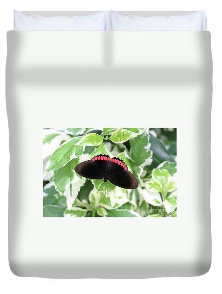 Red Rim Butterfly #2 Duvet Cover