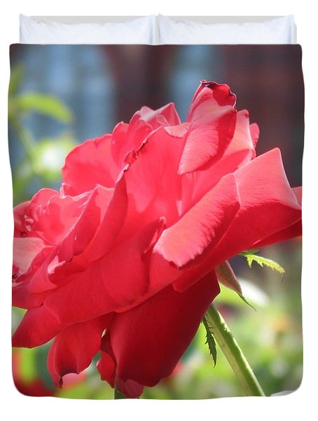 Red Rose Duvet Cover by Brian McDunn
